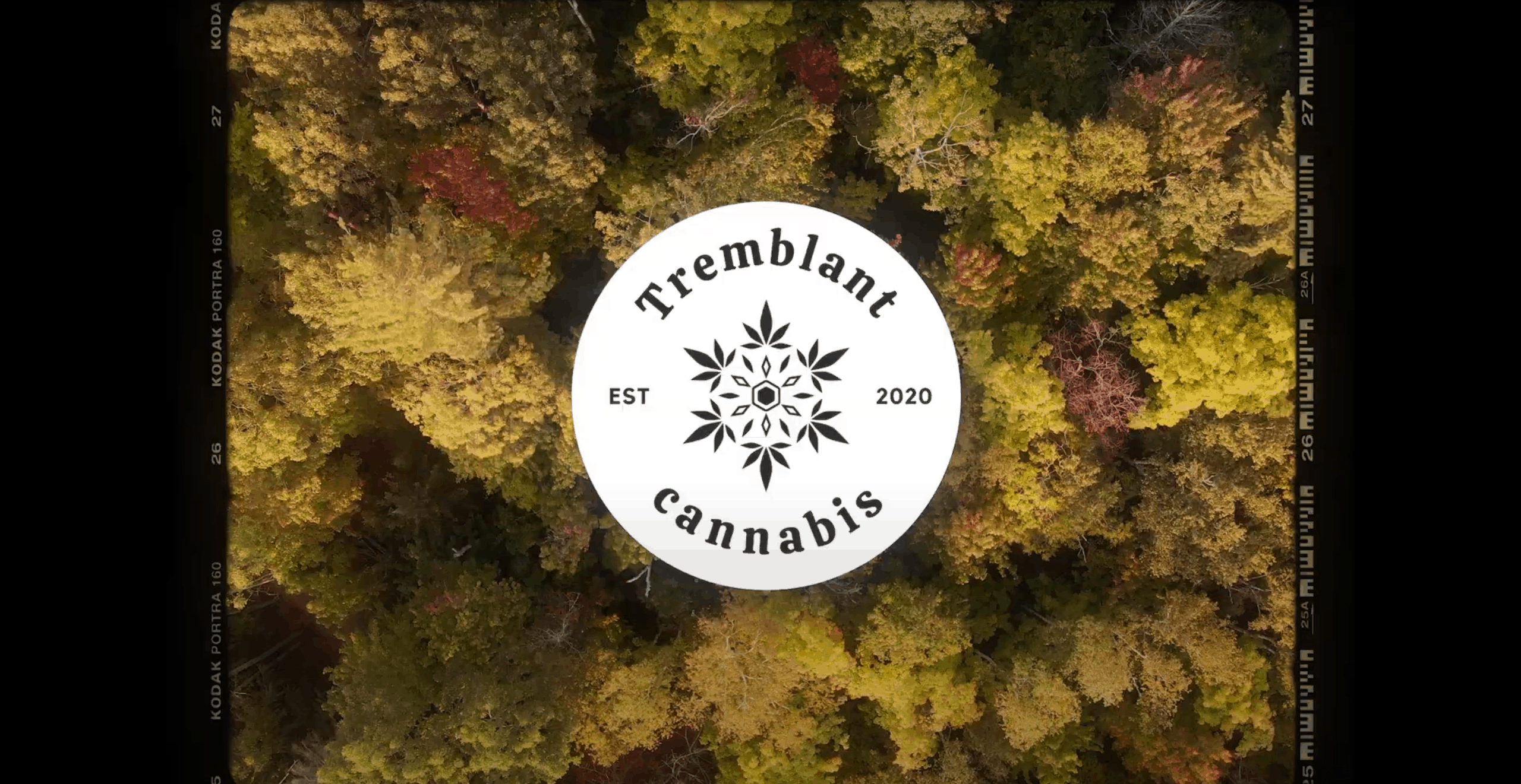 tremblant cannabis homepage video cover image